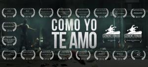 afiche Como Yo te Amo